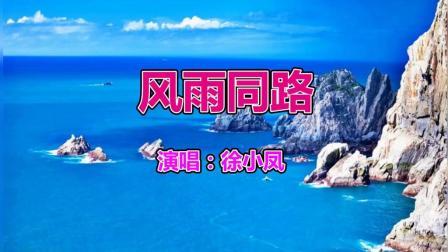 徐小凤经典歌曲《风雨同路》好听极了