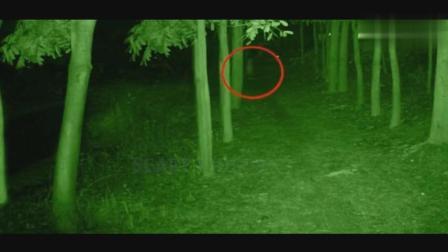 监控实拍: 深夜拍到的灵异一幕, 科学根本无法解释