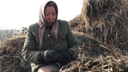 麦场两个老奶奶, 手里干的这种农活城里人根本不知道, 冬天太不易