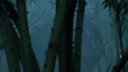 《新水浒传》: 火并王伦_53