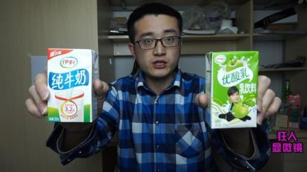 显微镜放大酸奶纯牛奶2000倍, 在微观世界酸奶和纯牛奶有什么区别