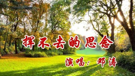 经典怀旧歌曲: 挥不去的思念 - 邓涛