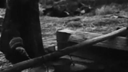 《斯大林格勒战役》战争的惨烈,最终受难的却是平民百姓!