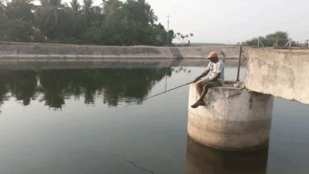 钓鱼: 一个无人打扰的钓点, 鱼口又特别好, 钓的很开心