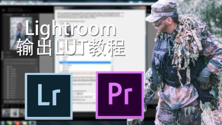 【调色技巧】三分钟教你用lightroom插件输出LUT文件