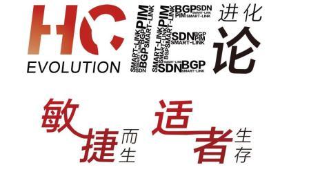 040-HCNA-入门-16STP-BPDU-华为网络技术