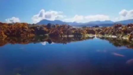 """英国纪录片《蓝色星球2》部分画面""""人工合成"""""""