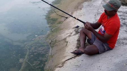 钓鱼: 农村大叔出水口钓鱼, 一下子就拉上来一条刀鳅鱼