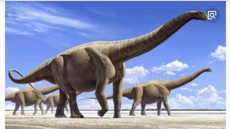 帮帮龙出动之恐龙探险队 恐龙世界动画片