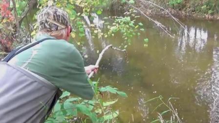 钓鱼: 山溪里这么多三文鱼, 烤来吃肯定很美味