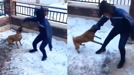 狗子: 让你再皮, 咬屎你!