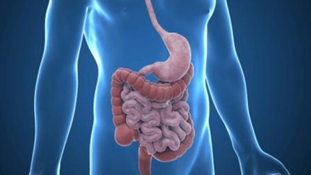 大肠癌是如何发生的?出现这些大肠癌的先兆症状要赶紧去检查了!