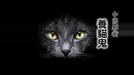 【小新】养猫鬼(古代中国怪谈故事)...粤语中字