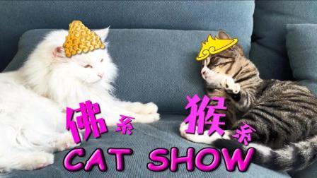 佛系猫咪VS猴系猫咪, 1家有此2主, 猫奴离精神分裂还远吗?