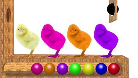 早教游戏色彩启蒙: 小鸡被球击中后变了颜色