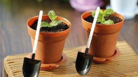 """像""""土""""一样的盆栽蛋糕, 制作方法简单易学只需要3分钟, 快收藏"""