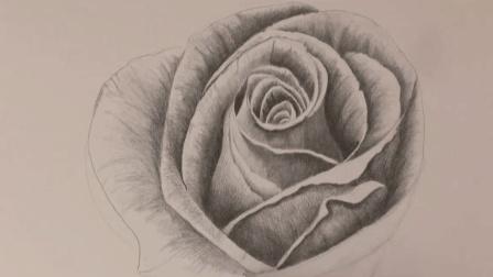 如何用自动铅笔速描玫瑰, 花瓣显时手有余香