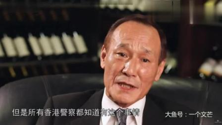 香港黑社会大佬陈慧敏讲述刘嘉玲绑架和蓝洁瑛事件, 句句经典实话