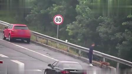 短发女生开奥迪, 高速上停车做出这事, 监控拍下她老公心碎15秒