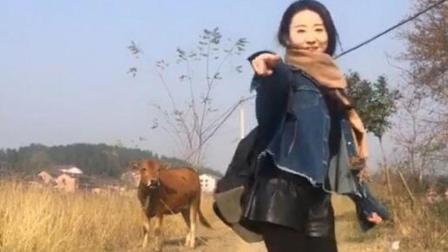 牛: 这女人比疯牛病还可怕, 溜了溜了