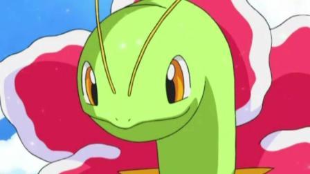 神奇宝贝, 森林蜥蜴失恋后的表情实在让人想笑