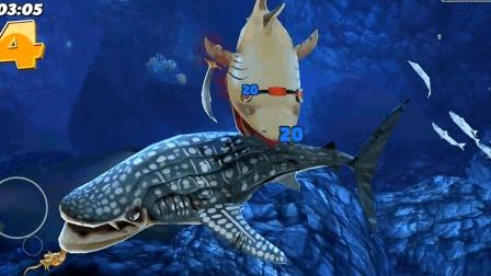 饥饿鲨世界: 进化的姥鲨有多恐怖? 能一口吞下蓝色大鲸鲨吗?