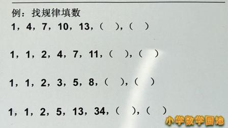 小学数学奥数 找数字规律答题挑战 小学生如果四题全对一定是学霸