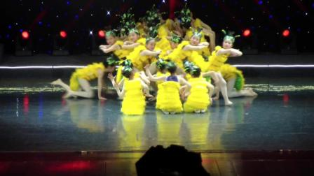 蛹蝶(新版) 少儿舞蹈 2018凤舞重歌少儿春晚 指导教师: 李晓雯