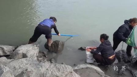 钓鱼: 三位大妈河边捞鱼, 提起网兜让人不敢相信