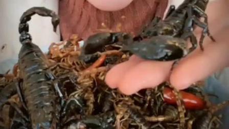 朋友圈的微商改卖五毒虫子大补 蛋白质丰富 借我十个胆我也不敢吃
