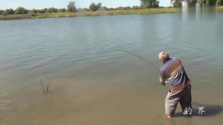 钓鱼: 这么大一条鲤鱼, 大叔竟溜翻了, 绝对有40多斤