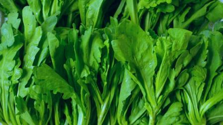 这种蔬菜配着大蒜一起炒, 吃一口, 血压一周都不高, 还能养心肺