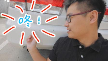 绿卡有了新消息,车被撞了(新西兰 Harold Vlog 343)