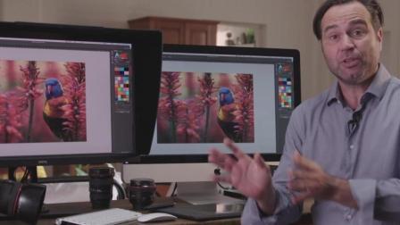 为什么你的MacBook Pro与Adobe RGB显示器的色彩有所不同?