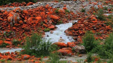 """神奇, 海拔4800米的河流""""一夜干涸""""露出""""红石"""", 原来是藻类作祟"""
