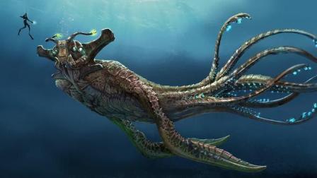深航迷航: 海底100米以下的景观让人感叹美丽又神秘 良心作品