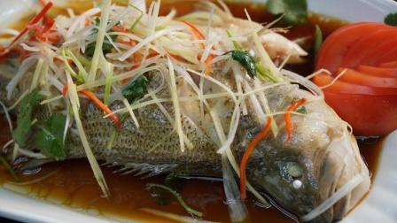 大师傅教你清蒸鲈鱼的经典做法, 讲解的太详细了, 学会用一辈子