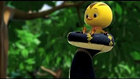 萌鸡小队: 四小鸡遇大蟒蛇, 麦奇朵朵欢欢好胆大, 和大蟒蛇玩游戏