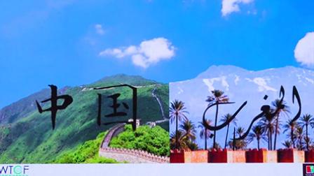 """""""一带一路""""中国非洲旅游论坛"""