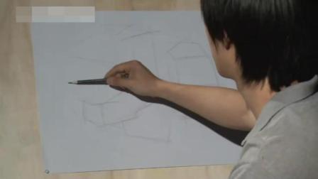 零基础素描培训班国画教程公鸡, 电脑国画教程图解, 素描入门目标结构素描教程
