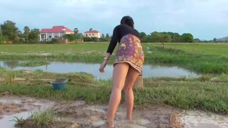 柬埔寨美女水田里捉鱼, 被一条狡猾的大鱼弄得狼狈不堪