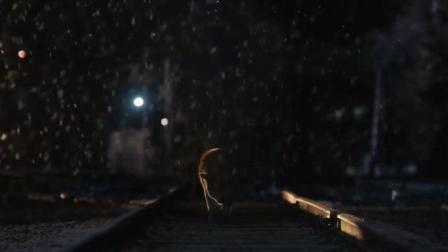 真实改编: 忠犬八公10年日月的等待, 催泪, 最终在生命终点等到主人