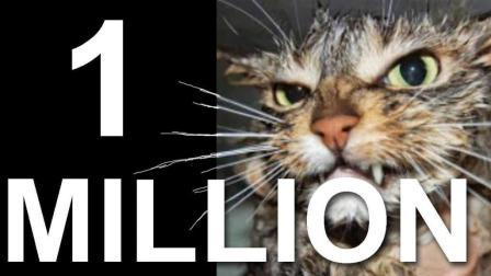 【法国猫片】 猫言猫语庆祝原UP一百万订阅噜