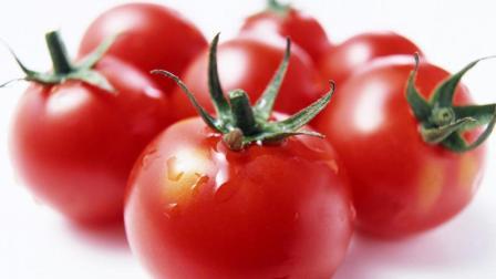 小助姐姐教你学做菜 之 番茄的花样切法