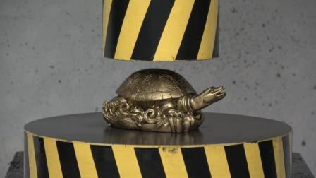当金钱龟遇上液压机会发生什么? 你猜它能撑几秒? 一起见识下!