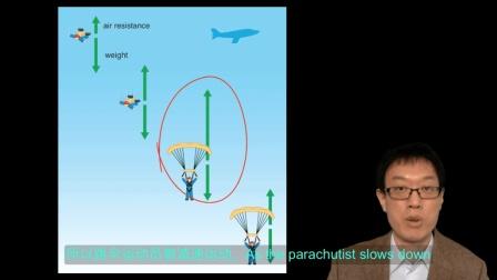 11 终端速率 terminal speed IGCSE Physics