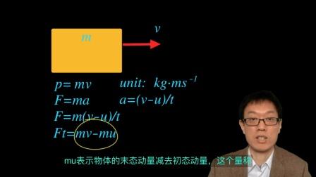 12 动量 momentum IGCSE Physics