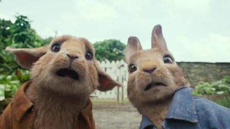 电影《比得兔》预告片2