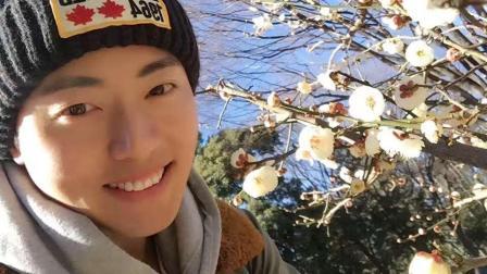 在日本名古屋踏雪寻梅过除夕!