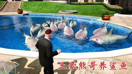 亚当熊 趣味模组大集合02, 熊哥养鲨鱼, 宝马I8挑战火车